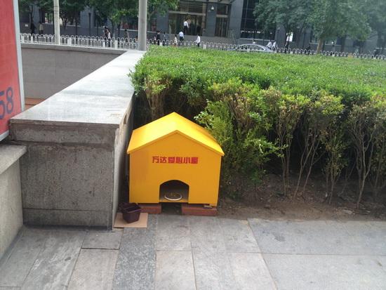 北京cbd万达建爱心小屋关爱流浪小动物