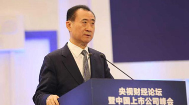 Wang Jianlin talks on the sports industry at the 2015 CCTV Financial Forum