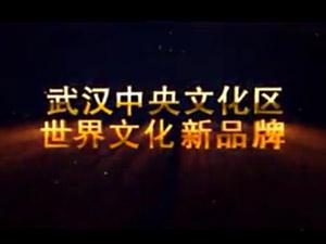 武汉中央文化区电视宣传片