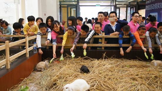 福州仓山商管邀请打工子弟参加牛忙节