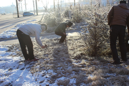 滿洲里萬達商管公司組織環保義工活動 冒早晨嚴寒揀垃圾