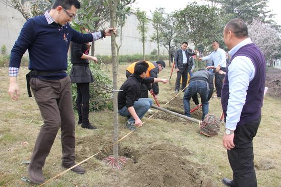 成都锦华路www.64222.com广场开展植树活动