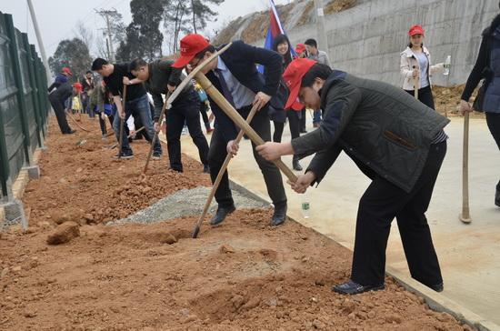 绵阳涪城商管开展植树义工活动 相约春天共植希翼