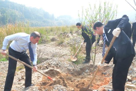 宁德万达嘉华酒店组织酒店志愿者一同参与义务植树活动