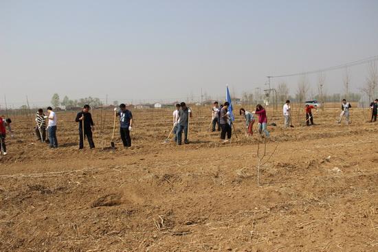 廊坊商管义工开展义务植树活动