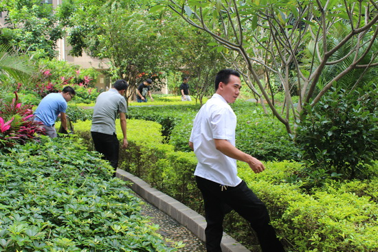 酒店建设公司龙岩项目部举行湿地公园清除垃圾义工活动
