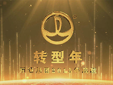 万达集团2015年成果片