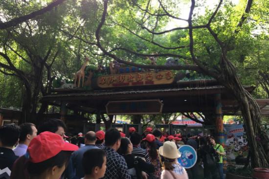 文旅院赴广州长隆野生动物王国考察
