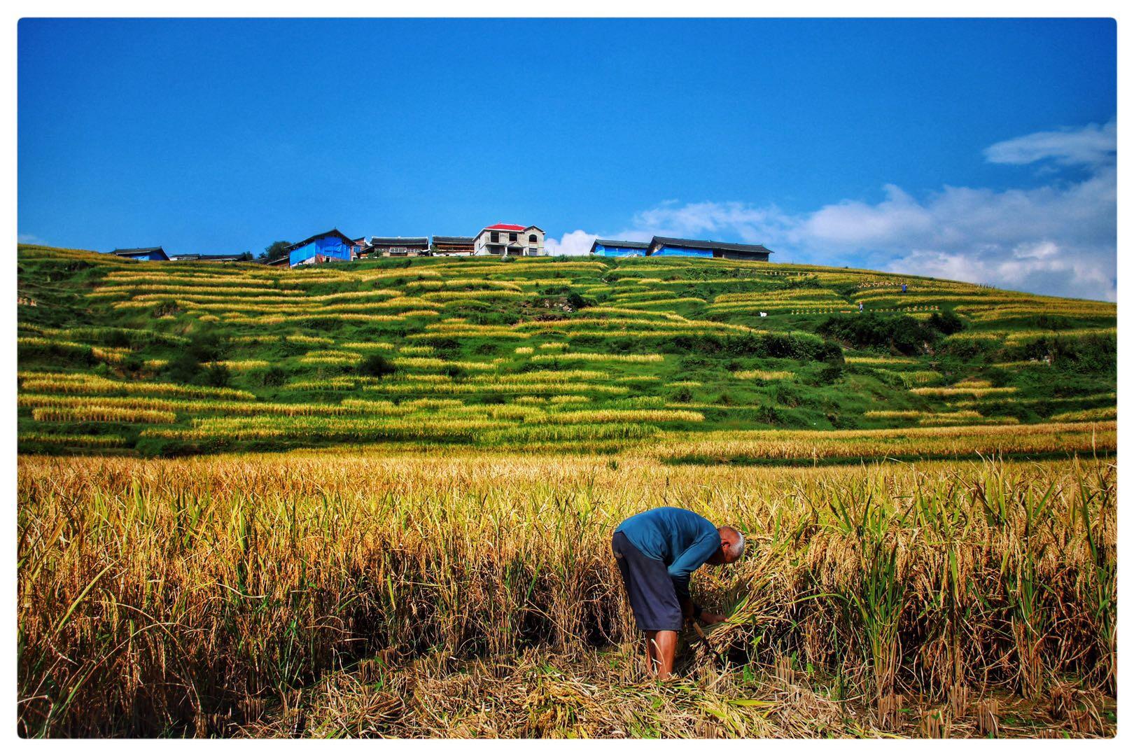 云上丹寨摄影月赛第二期获奖名单公布