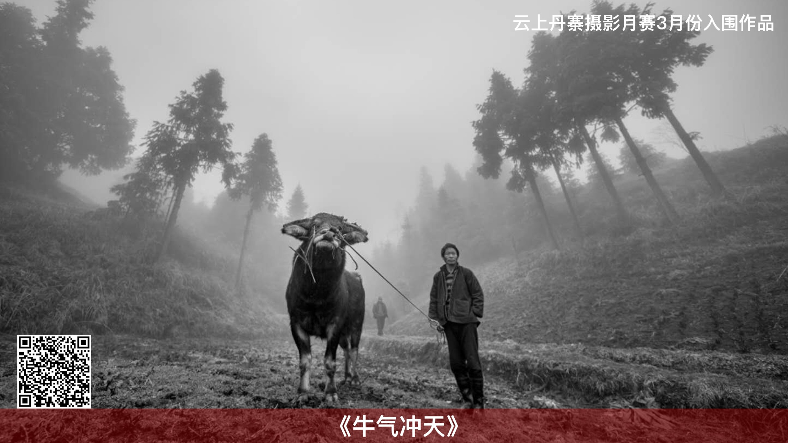"""""""雲上丹寨攝影月賽""""3月入圍及獲獎作品出爐"""