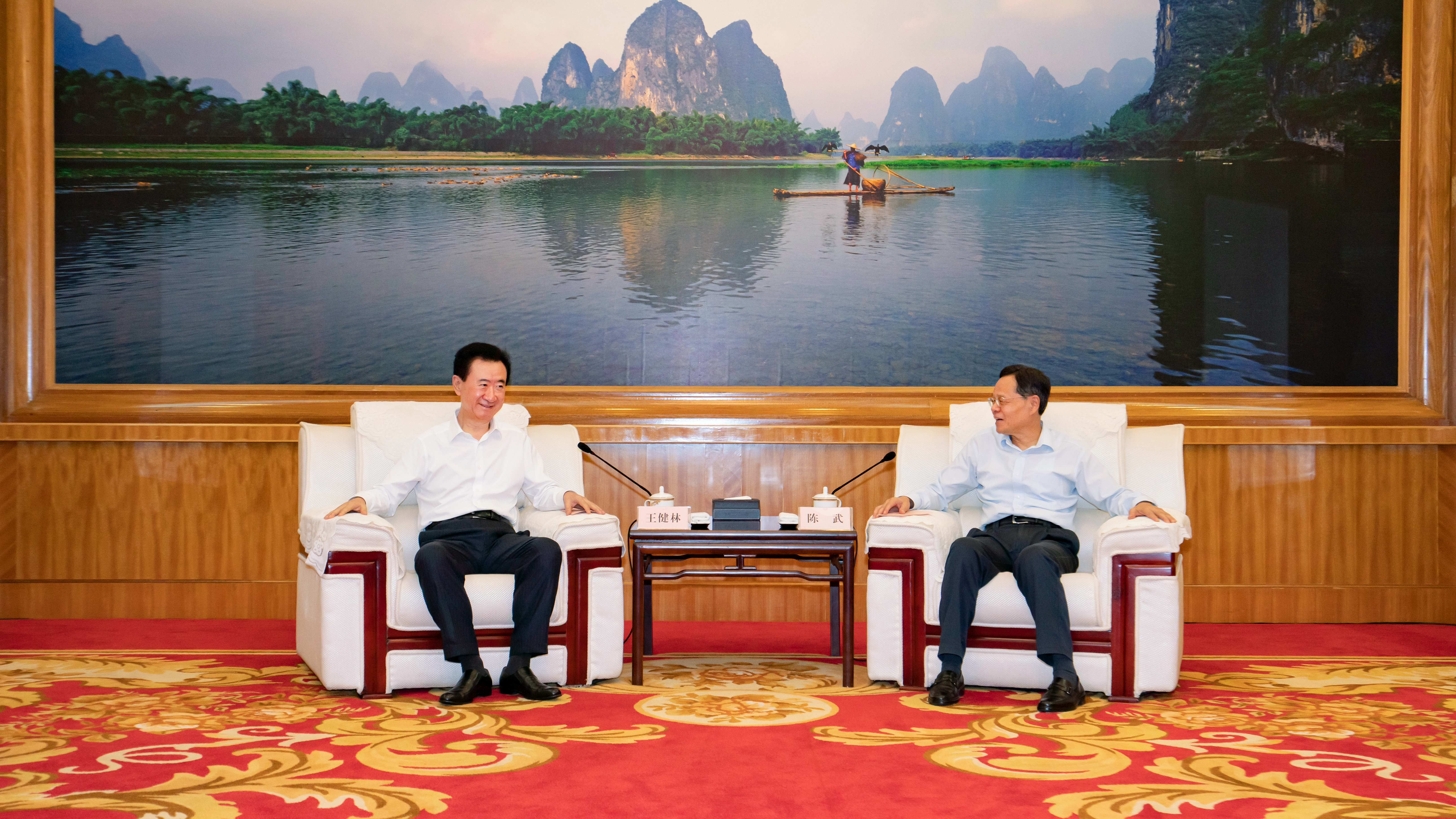广西壮族自治区人民政府主席陈武会见王健林董事长