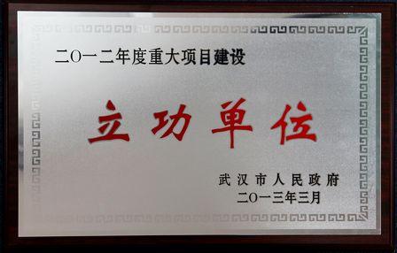 武漢項目公司獲評年度市重大項目建設和前期推進(策劃)先進單位